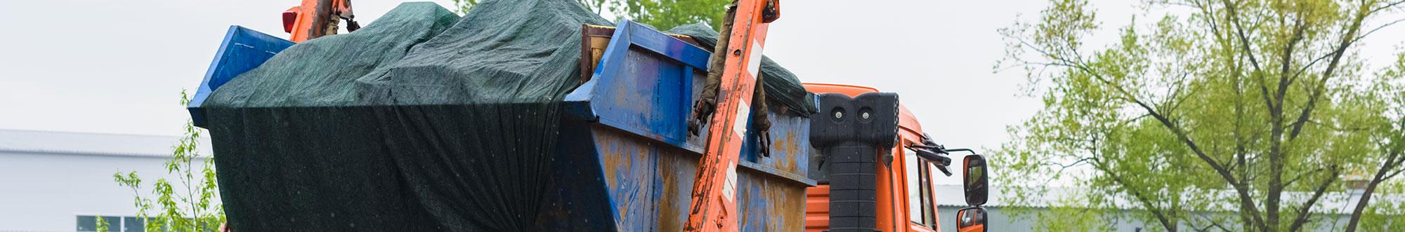 Skip Waste